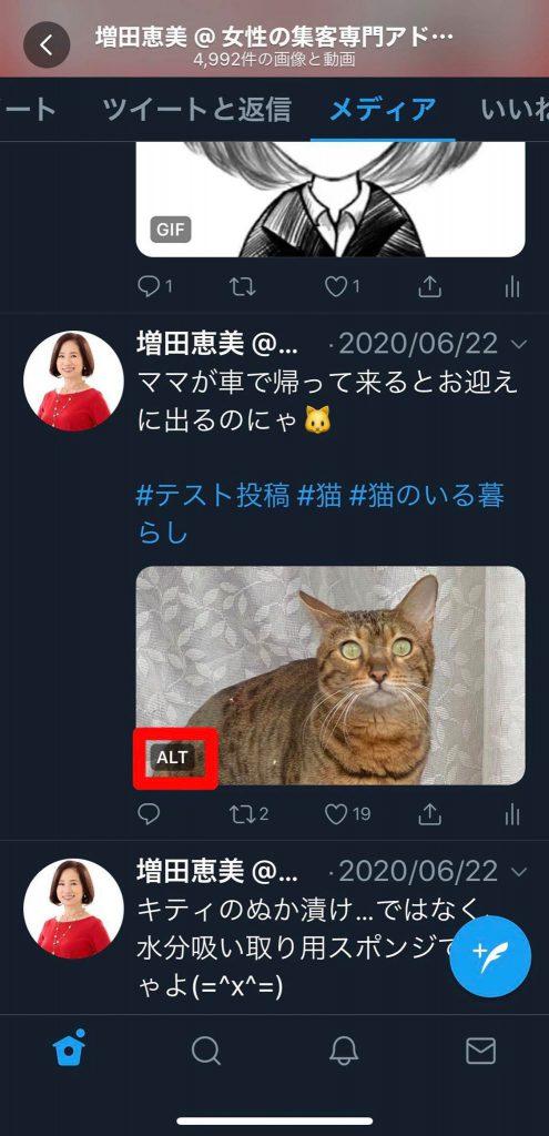 ツイッターの画像に代替テキストを入れるとALTと表示される